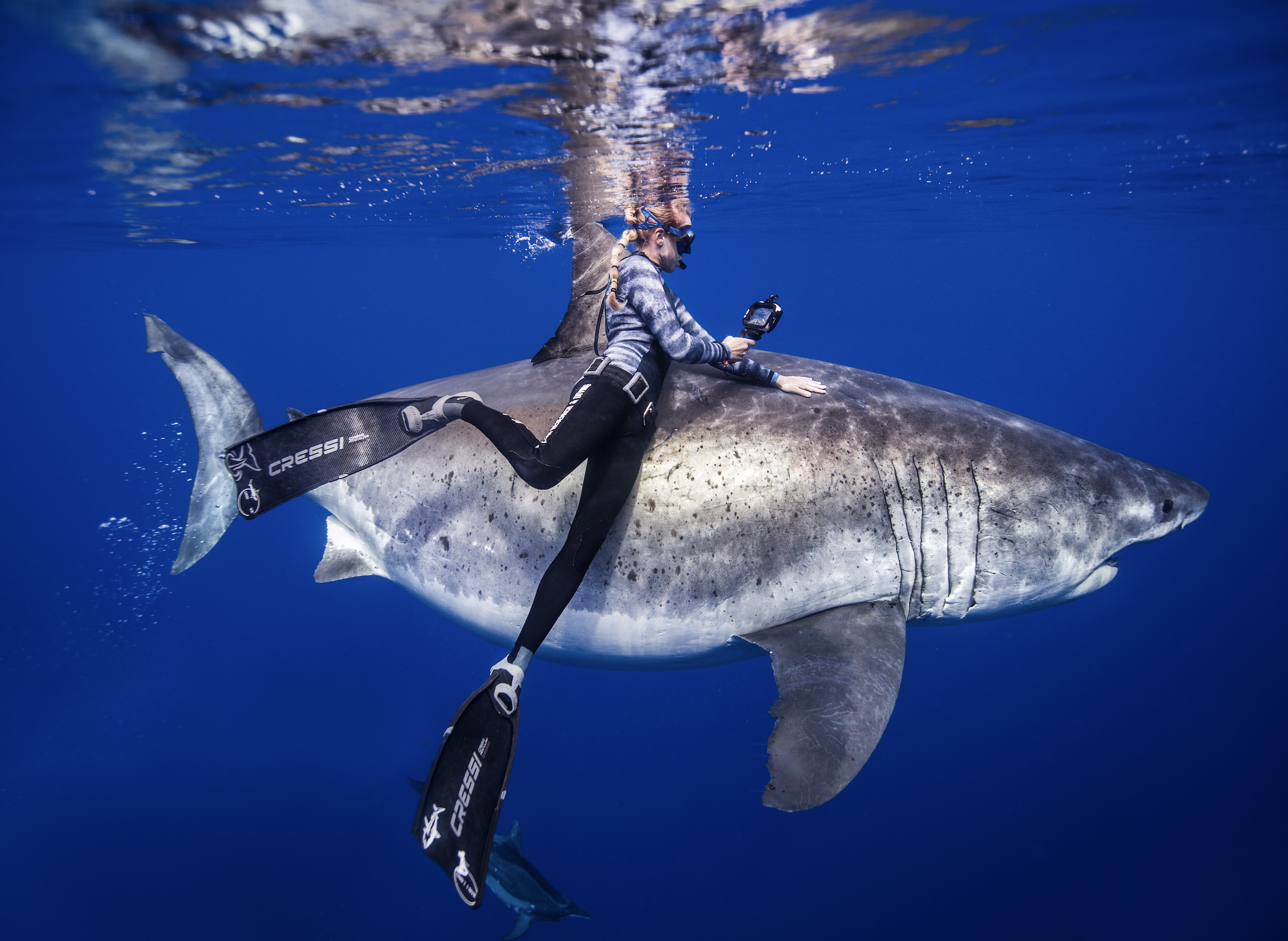 Episode 92: Kayleigh Grant – Shark Naturalist, Conservationist, free-diver, and Safety Diver for One Ocean Diving
